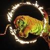 Цирки в Якутске